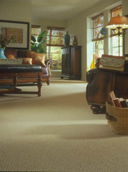 carpet flooring in middletown