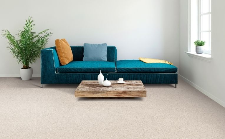 contrasting furniture light carpet flooring